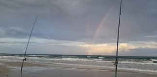 Où Pêcher en Tunisie