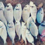Pêche en Tunisie